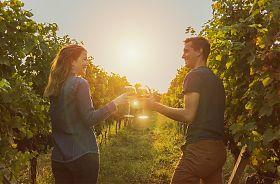 Wein-Wandern