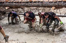 Wildsau Dirt Run