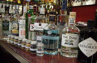gin tasting sligo